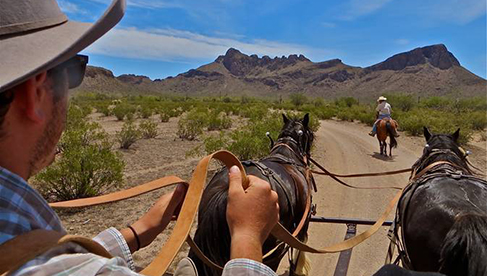 White Stallion Ranch Arizona Dude Ranch Holiday
