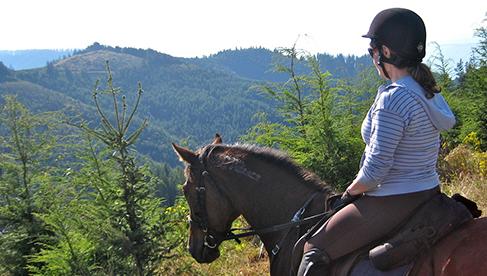 Willamette Coast Ride Oregon Beach Horseback Riding Tour