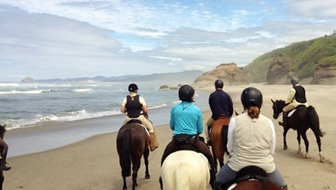 Willamette Coast Ride Oregon Beach Vineyard Horseback Riding Tour