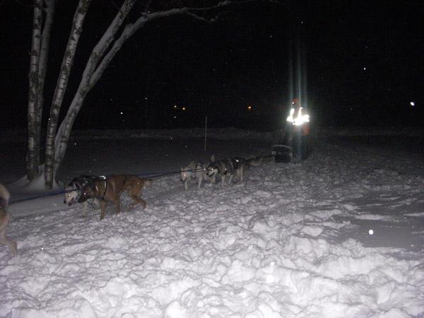 dog sled vermont
