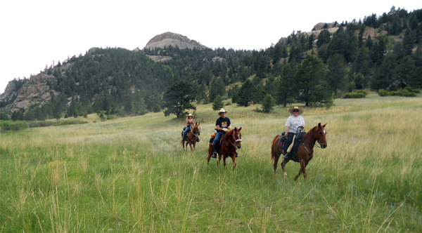 dome rock colorado horse trails