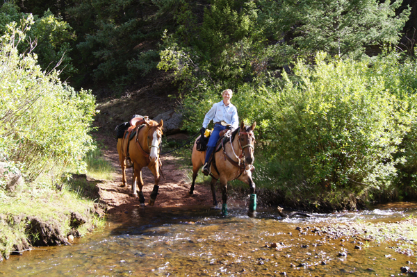 dome rock colorado trail riding debbie bibb