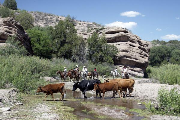double e ranch roundup