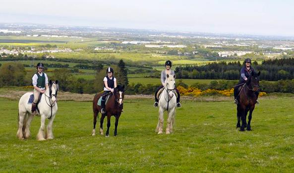 crossogue equestrian ireland