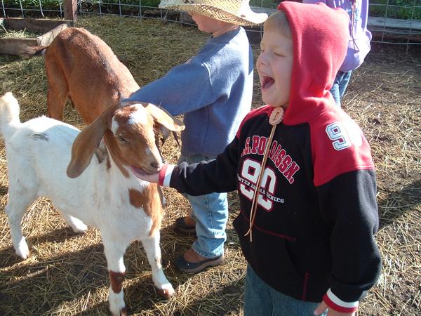 elk mountain ranch dude ranch kids program