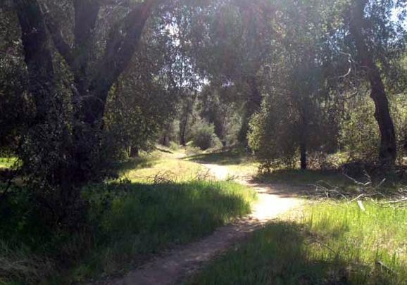 eagle rock horse trails