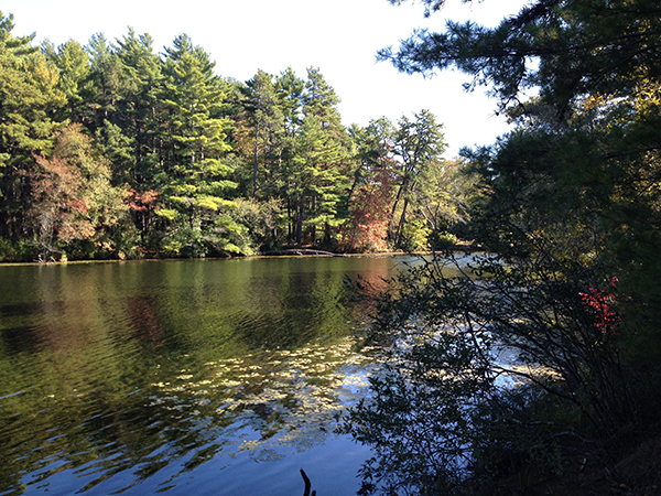 east head reservoir myles standish state forest massachusetts
