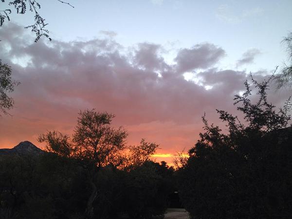 Elkhorn Ranch Arizona sunset