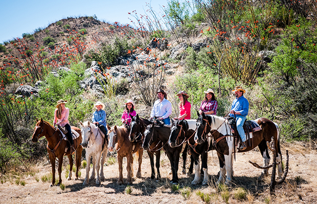 Elkhorn ranch deals arizona