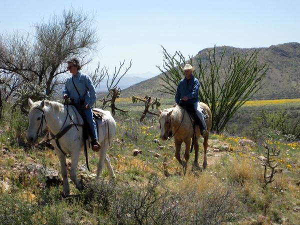 elkhorn ranch horseback riding winter