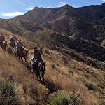 Elkhorn Ranch Arizona
