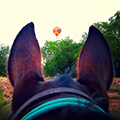 Enchantment Equitreks Balloon Horseback riding