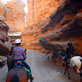 Enchantment Equitreks Specialty Weeks Horseback riding
