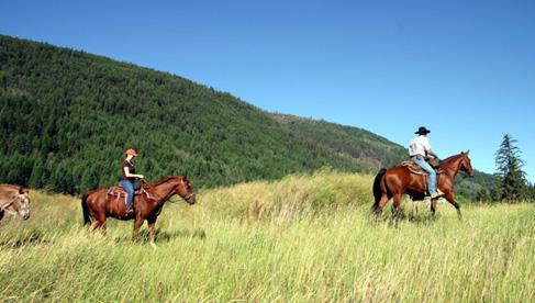 Tod Mountain Ranch