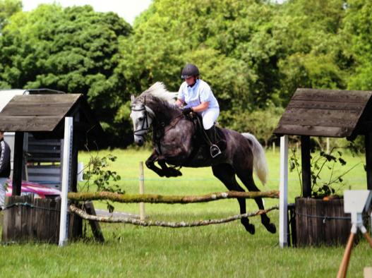 Cathriona Goaley equestrian ireland