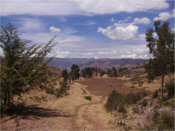 scenic view of equestrian trails in cusco peru
