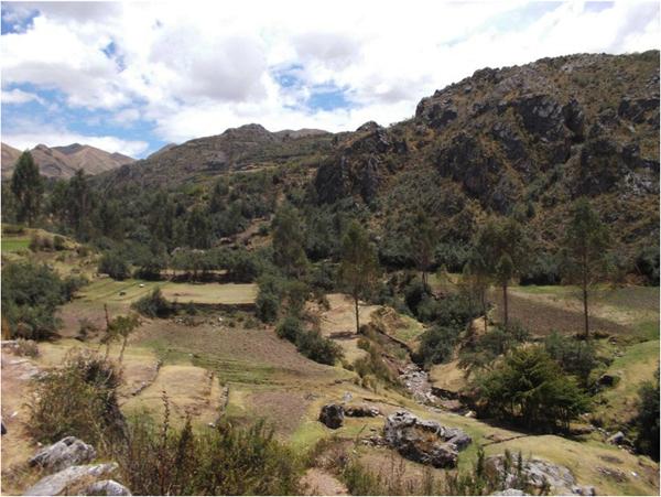 view of mountains and equestrian trails in cusco peru