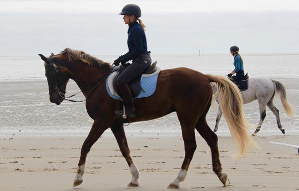 riding horses on the beach south carolina