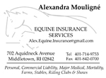 Equine Insurance Services