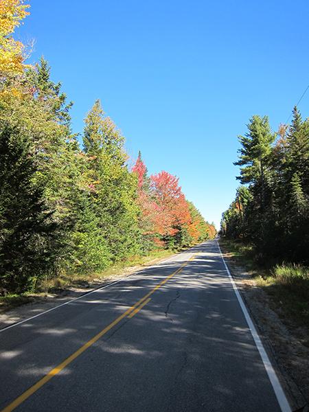 fall foliage maine