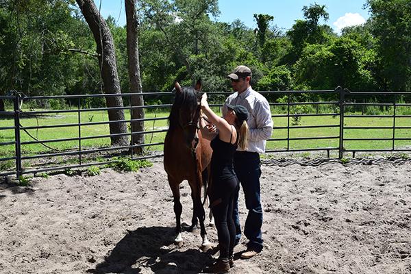 Rafter P horsemanship retreats Florida