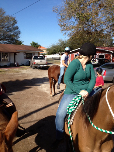 florida horseback riding trails pinellas park