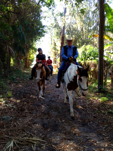 florida horse riding vacation pinellas park