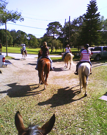 Florida horse riding equestrian community