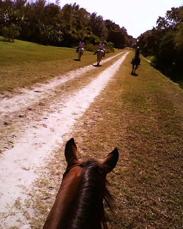 florida horseback riding trails