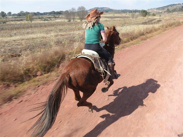 gallop ranch vacations