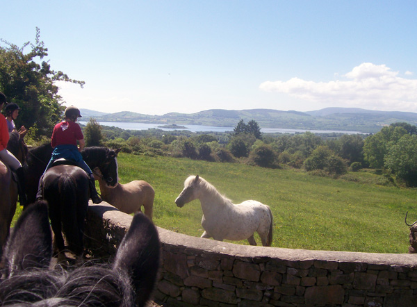 Galway riding vacation