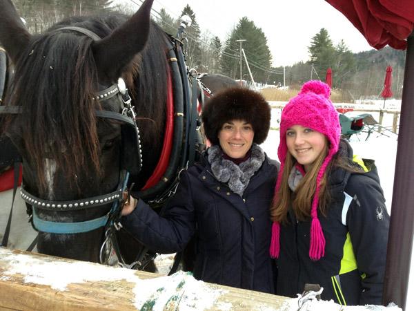 gentle giants horses vermont