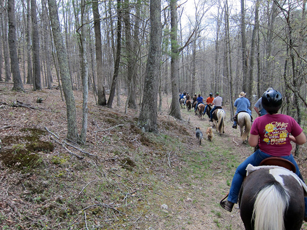 Horseback riding Virginia George Washington National Forest