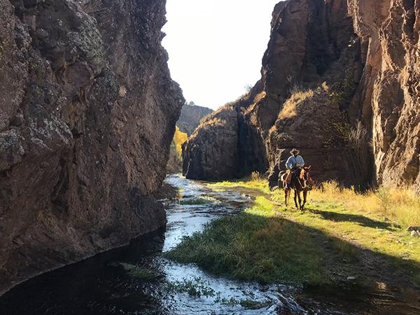 Geronimo Guest Ranch New Mexico horseback riding