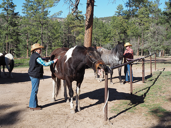 Geronimo Trail Guest Ranch guests