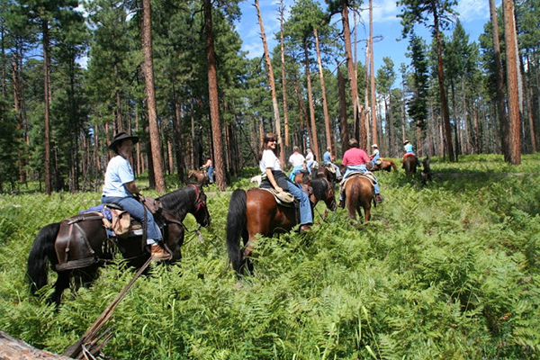 gila hot spring ranch horseback riding pack trips