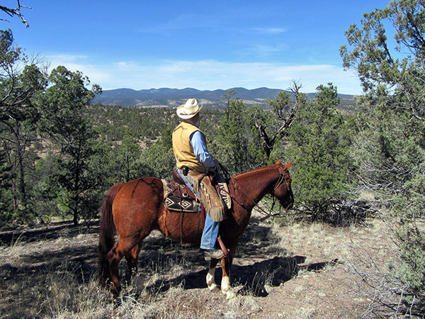 no crowds in the gila national forest while horse riding