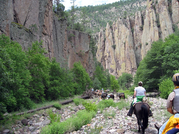 gila wilderness horseback riding