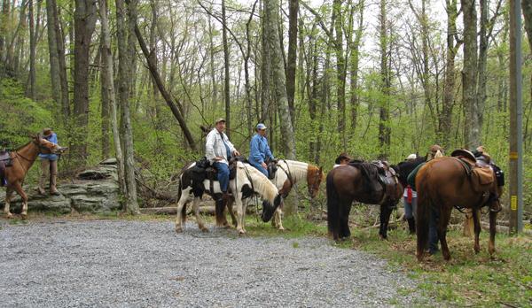 graves mountain horseback virginia