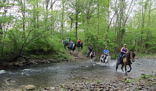 Graves Mountain Virginia Creek Horseback