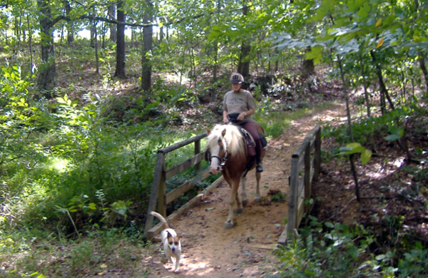 Green River Lake Park Kentucky horse trails