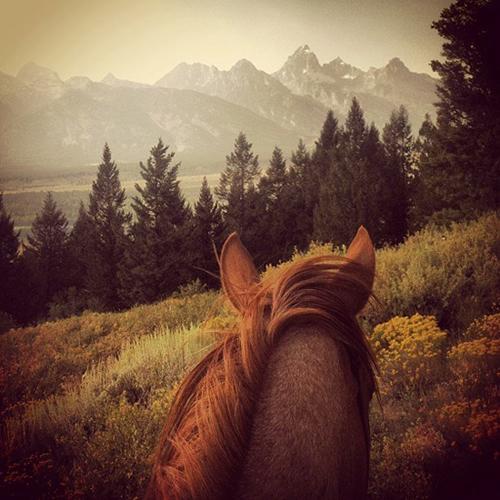gros centre river ranch horseback