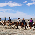 Mustang horse adventures wyoming