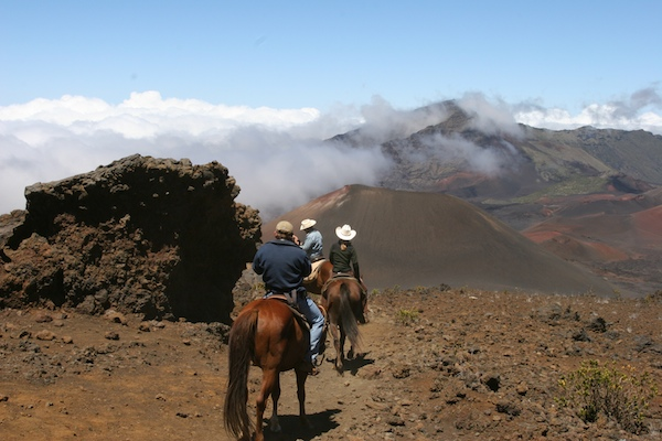 haleakala horse riding maui