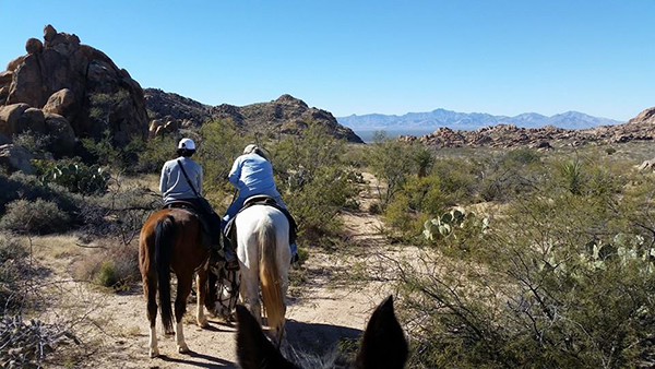 hideout ranch arizona trails
