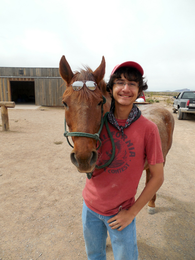 hideout ranch horses