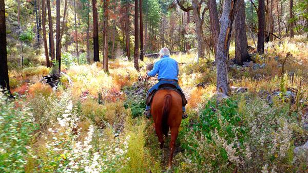 hideout ranch arizona