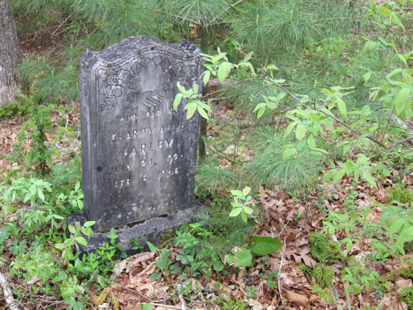 historical grave marker of early settler of camp creek area west virginia