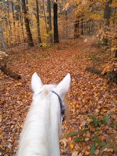 hocking hills horseback