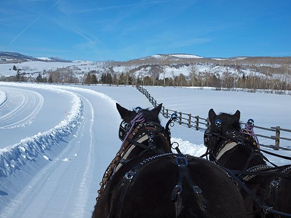 home ranch christmas horse drawn sleigh
